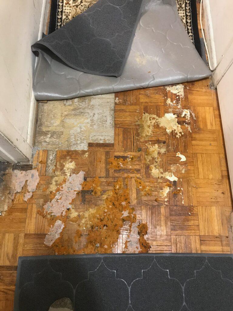 Poor floor